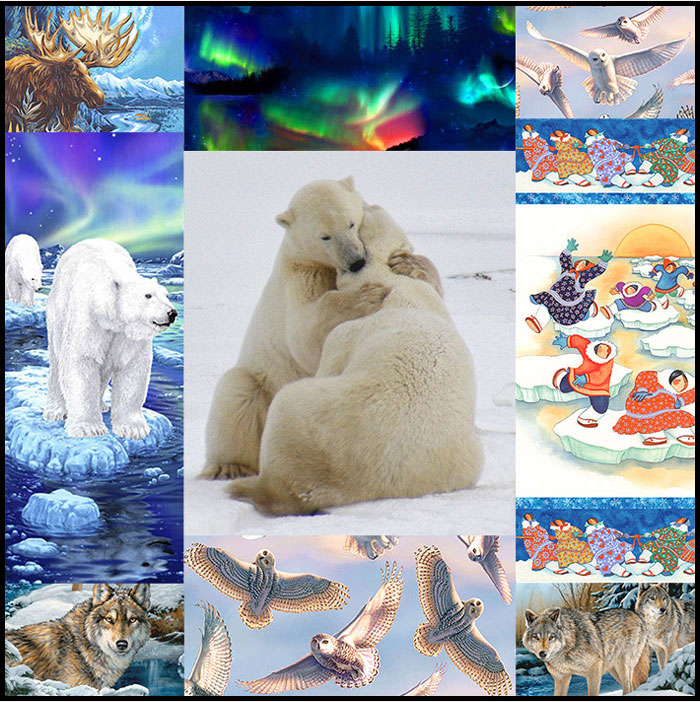 Thanksgiving Polar Bear Tour